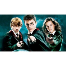 """MAGIČNA PALICA """" HARRY POTTER-wand chooses the wizard """""""